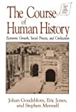 The Course of Human History: Civilization and Social Process (Sources and Studies in World History)