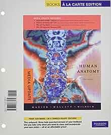 book Проектирование несущих конструкций радиоэлектронных средств: Учебное