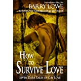 How to Survive Lovepar Barry Lowe