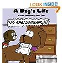 No Shenanigans!
