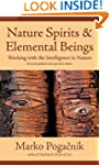 Nature Spirits and Elemental Beings:...
