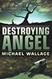 Destroying Angel (Righteous Series #5)
