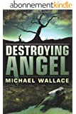 Destroying Angel (Righteous Series Book 5) (English Edition)