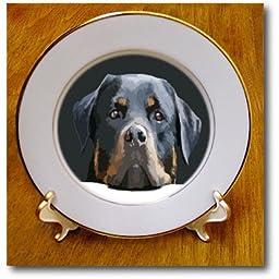 3dRose cp_214066_1 Rottweiler Portrait Vector Porcelain Plate, 8\