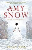 Amy Snow: The Richard & Judy Bestseller (English Edition)