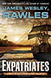 img - for Expatriates: A Novel of the Coming Global Collapse book / textbook / text book