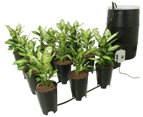 Buy Grow FlowProducts Now!
