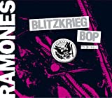 Ramones Sheena Is A Punk Rocker Mp3 Downloads