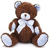 Blue & Brown Plush Teddy Bear Adorable Stuffed Animal