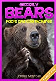 Grizzly Bears: Fun Facts and Cool Pictures. (Animal Photo Books for Kids)