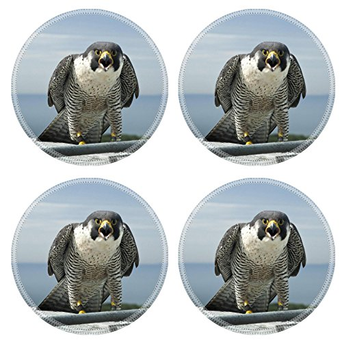 luxlady-round-coasters-marine-parkway-bridge-falcons-natural-rubber-material-image-27341429726