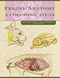 img - for Feline Anatomy: A Coloring Atlas 1 Workbook Edition by McCraken, Thomas O., Carlson, David, Fails, Anna Dee (2013) Paperback book / textbook / text book