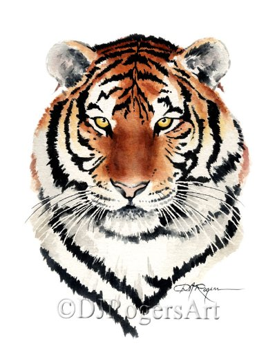 Bengal Tiger Watercolor Art Print Signed by Artist DJ Rogers david abner j visual guide to etfs