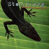 Stony Sleep Music for Chameleons