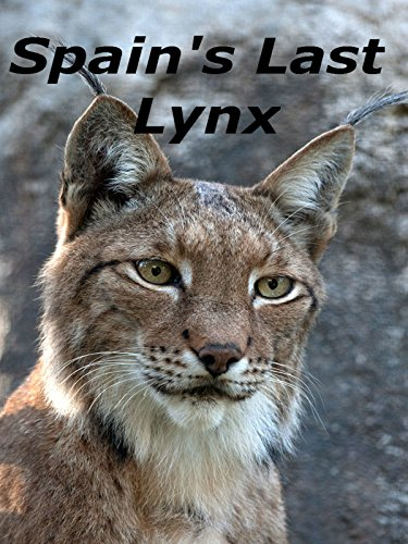 Spain's Last Lynx on Amazon Prime Video UK