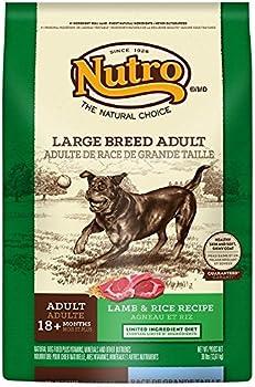 NUTRO Adult Dry Dog Food