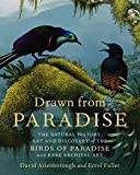 img - for Drawn from Paradise: The Natural History, Art and Discovery of the Birds of Paradise with Rare Archival Art book / textbook / text book