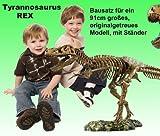 XL Tyrannosaurus Rex Skelett 91cm von EDU-Science