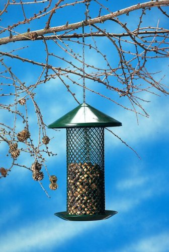 Wildlife-World-Squirrel-Proof-Metal-Nut-Feeder-With-Diamond-Mesh-23cm