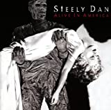 Steely Dan Alive in America