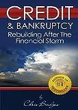 Credit & Bankruptcy: Rebuilding After the Financial Storm