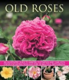 Old Roses: an Illustrated Guide to Varieties, Cultivation and Care, with Step-by-step Instructions and Over 120 Beautiful Photographs