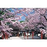 四季の詩 1000ピース 桜こぼれる平野神社 (50cm×75cm、対応パネルNo.10)
