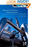 Natural Gas Hydrates in Flow Assurance,