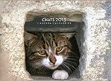 echange, troc Collectif - L'agenda-Calendrier Chats 2013