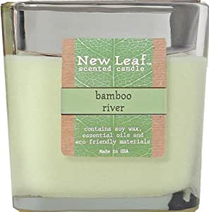 Candle-lite New Leaf  13-Ounce 2-Wick Jar with Soy Wax, Bamboo River