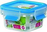 EMSA 0.25 Litre Clip and Close Food Square Storage Container, Transparent