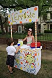 Lemonade Stand in a Box