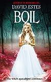 Boil (Salem's Revenge Book 2)