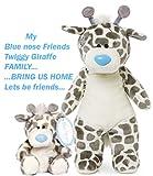 My Blue nose Friends Twiggy Giraffe famly... Bring us Home Tatty Teddy Toys Twiggy