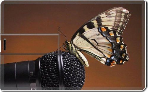 Microphone With Black White Butterfly Insect 8G Usb Flash Drive 2.0 Memory Stick Luxlady Usb Credit Card Size Customized Support Services Ready Windows Mac Storage External