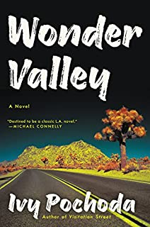 Book Cover: Wonder Valley: A Novel