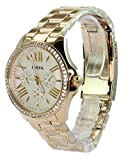 Fossil  Dial Analogue Watch for Women (AM4482)