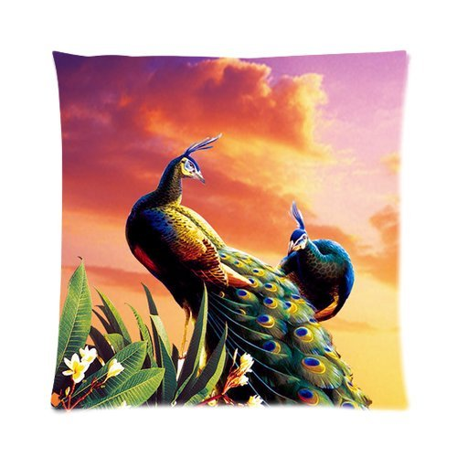 """Elegant Peacock Feather Print Custom Zippered Pillow Cushion Case Throw Pillow Covers 16""""X16""""(Two Sides) front-915214"""