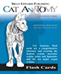 Cat Anatomy Flash Cards