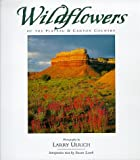 img - for Wildflowers of the Plateau and Canyon Country book / textbook / text book