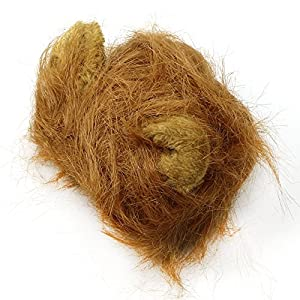 Chunlin Pet Costumes Lion Mane Wig Cat Costume and Small Dog Costume with Complimentary Feathered Catnip Toy