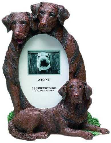 E&S Pets 35257-56c Large Dog Frames