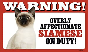 Warning Overly Affectionate Cat (Siamese) On Duty