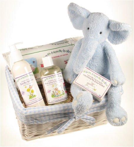 Baby Gift Basket Delivered : Baby gift basket delivery january