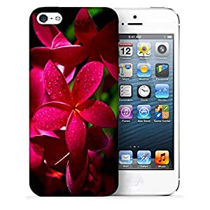 Snoogg Red Flower Designer Protective Back Case Cover For IPHONE 5