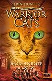 Warrior Cats - Die neue Prophezeiung. Morgenr�te: II, Band 3