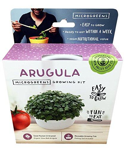 Mini Microgreens Growing Kit - Arugula