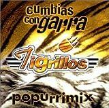 echange, troc Tigrillos - Cumbias Con Garra Popurrimix
