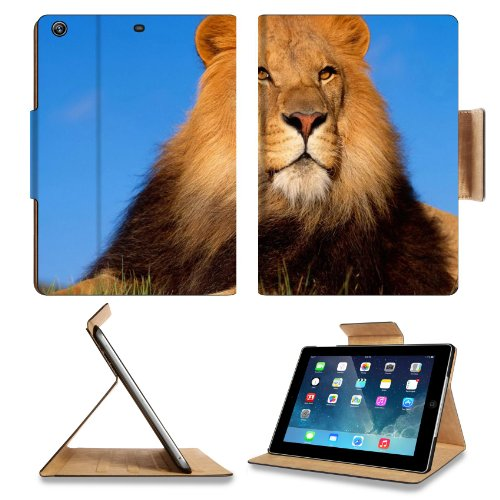 Animal Wildlife Lion King Africa Cat Alone Pride Predator Apple Ipad Air Retina Display 5Th Flip Case Stand Smart Magnetic Cover Open Ports Customized Made To Order Support Ready Premium Deluxe Pu Leather 9 7/16 Inch (240Mm) X 7 5/16 Inch (185Mm) X 5/8 In front-321407