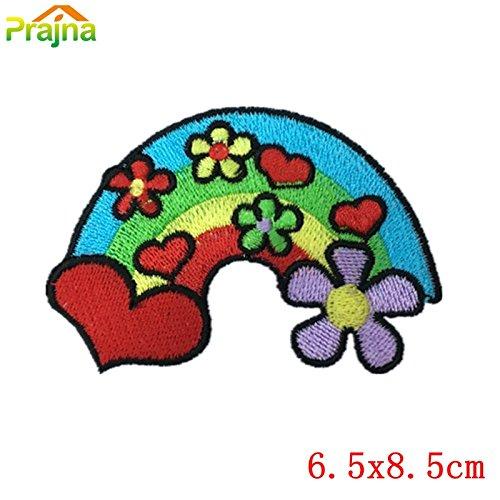vintage-correccion-de-la-flor-nueva-1pcs-rose-del-arco-iris-cactus-de-hierro-en-los-remiendos-de-la-